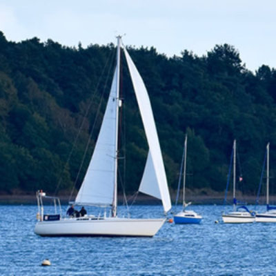 Sailing Trips on River Orwell Near Ipswich