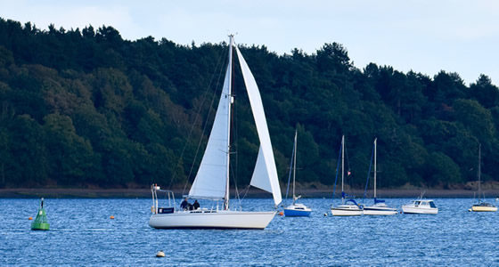 sailing ipswich river orwell