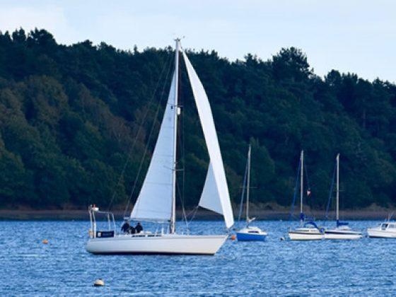 Sailing Trips on River Orwell Near Ipswich