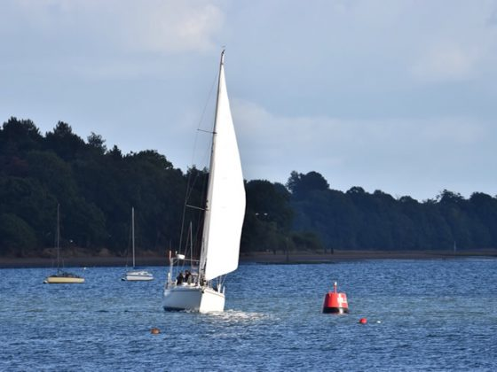 sailing river orwell river stour